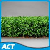 Прованское синтетическое основание песка травы для коммерческого использования сада