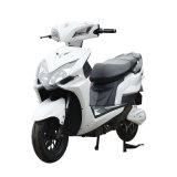 Elektrische fiets voor volwassenen met twee wielen van 1000 W tot 2000 W.