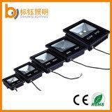 고능률 100W 옥외 IP67는 정원 점화 LED 투광램프를 방수 처리한다