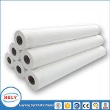 Papier synthétique de position recyclable de peinture dans l'étiquette modèle