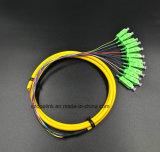 Gpon Telecommucation оптоволоконный кабель 12 ядер Boundle Sc/APC патч шнуры питания