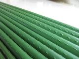 Grüner Plastik beschichtete Pflanzenstange