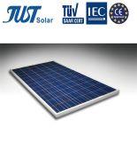 Poli comitato solare popolare di disegno 295W in Cina