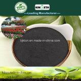 Il carbonio di Kingeta ha basato il fertilizzante organico per i raccolti economici