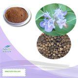 Выдержка 100% естественная Vitex Trifolia (5% Vitexin, флавоны 5%, Agnuside 0.5%~2%)