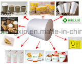 Papel revestido de taza de café del solo PE lateral