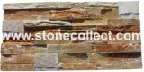De Stenen van de cultuur/de Bakstenen van de Muur/de Tegels van de Muur (ABW014)