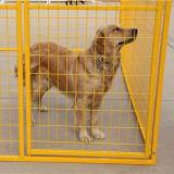 Beste Preis-Gelb-Farben-Maschendraht-im Freien große Hundehundehütte