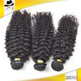 Extensão do cabelo de /Virgin da onda do cabelo de Remy/cabelo brasileiro cru