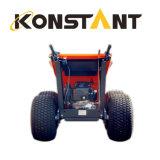 芝生のタイヤと小型ダンプをロードする250kg