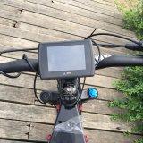 Neumático gordo Ebike 3000W de la bici gorda eléctrica de Leili