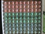 Color multi del tenis de vector del celuloide con 6 caras o 12 caras que cubren bolas de la loteria de la rifa del Keno del bingo de la lotería