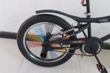Bicicleta do estilo livre do modelo 20 novo