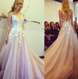 ピンクのテュルのイブニング・ドレスのレースの花嫁の結婚式のプロムはZ5029に服を着せる