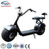 LG電池1000W Harleyの電気スクーターを使って