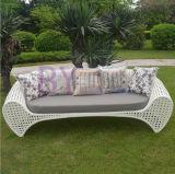 Sofa de luxe classieux de loisirs de salle de séjour extérieure blanche de jardin