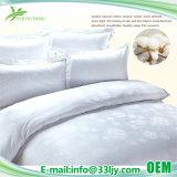 Insieme bianco poco costoso dell'assestamento del cotone dell'appartamento