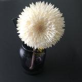 Algemeen de Bloem van Flos Chrysanthemi Sola voor de Verspreider van het Riet door Met de hand gemaakt