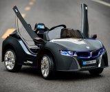 Conduite électrique de gosses sur des véhicules à télécommande