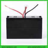 Batterie d'ion de lithium de la batterie au lithium 24V 10ah pour l'E-Scooter de mer avec la conformité de la CE