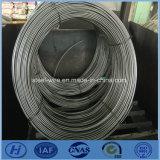 Acier inoxydable de matériau de construction de Stellite 3 piquant le fil plat dans les bobines