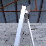 2.97メートルの単一の棒によって逆にされる三角形の耕種学的な溶接金属の梯子