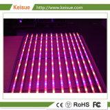 プラント成長のための8PCSランプが付いている専門LEDの照明設備