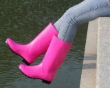 Gaine de couleur de femmes, gaines de pluie de Madame Red, gaine de pluie bon marché