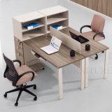 Dos asientos ergonómicos utilidad profesional equipo de oficina Estación de trabajo (SZ-WST631)