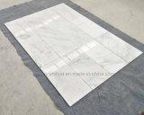 Tuile de marbre blanche /Slab /Step de neige de prix usine de la Chine