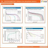 Свободно батарея фосфата утюга лития обслуживания (LiFePO4) 19inch 48V100ah