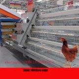 Куриное мясо бройлеров клетку Автоматическое оборудование для птицеводства для стран Южной Америки фермы