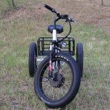 Intelligentes Controller-Lithium-Batterie-elektrisches Dreirad