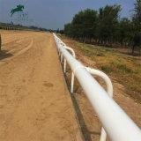 Cerca flexível barata da corrida de cavalos da qualidade de Hight