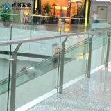 Pasamano magnífico del acero inoxidable de la seguridad del diseño para la alameda de compras