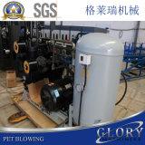 De semi-auto Plastic Machine van de Rek van de Fles Blazende Vormende voor 5L Flessen