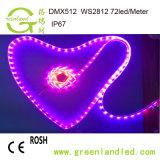 Il Ce RoHS del commercio all'ingrosso della fabbrica di Shenzhen ha approvato la striscia dell'indicatore luminoso di 5m 5050 il RGB LED