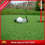 جافّ [ب] تمويه مرج عشب من الصين