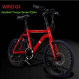 熱い販売のトルクセンサー26インチのLithiumion電池の電気バイク