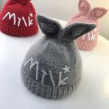 Winter-Freizeit-Wollenbeanie-Hut mit Customed Firmenzeichen und Entwurf