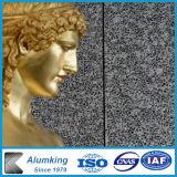 Gomma piuma di alluminio decorativa della parete della gomma piuma del metallo