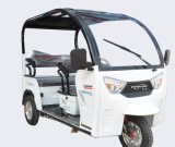48V800W 3 바퀴 세발자전거 드럼 브레이크 인력거 전기 6-8 시간 시간 Trikes