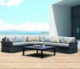 4PCS het openlucht Rieten Terras Nelly Lounge Garden Sofa van het Bureau van het Hotel van het Huis van de Rotan (J650)