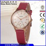 ODM correa de cuero de moda clásico de cuarzo señoras reloj de pulsera (Wy-096B)
