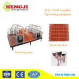 La chèvre cochon Flooring latte-de-chaussée pour les porcs