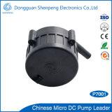 bomba silenciosa do calefator elétrico de mais baixa potência 12V para o aquecimento de assoalho
