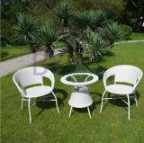 Meubles extérieurs modernes blancs de maison de rotin de PE de jardin