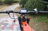 Электрический жир Bike полной приостановки жир батареи шины 5000W