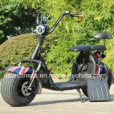 Новый стиль спорта электрического велосипеда 2 колеса электрический мотоцикл Ny-E85