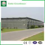 Van de Spanwijdte van de landbouw de MultiSerres van het PC- Blad voor het Planten